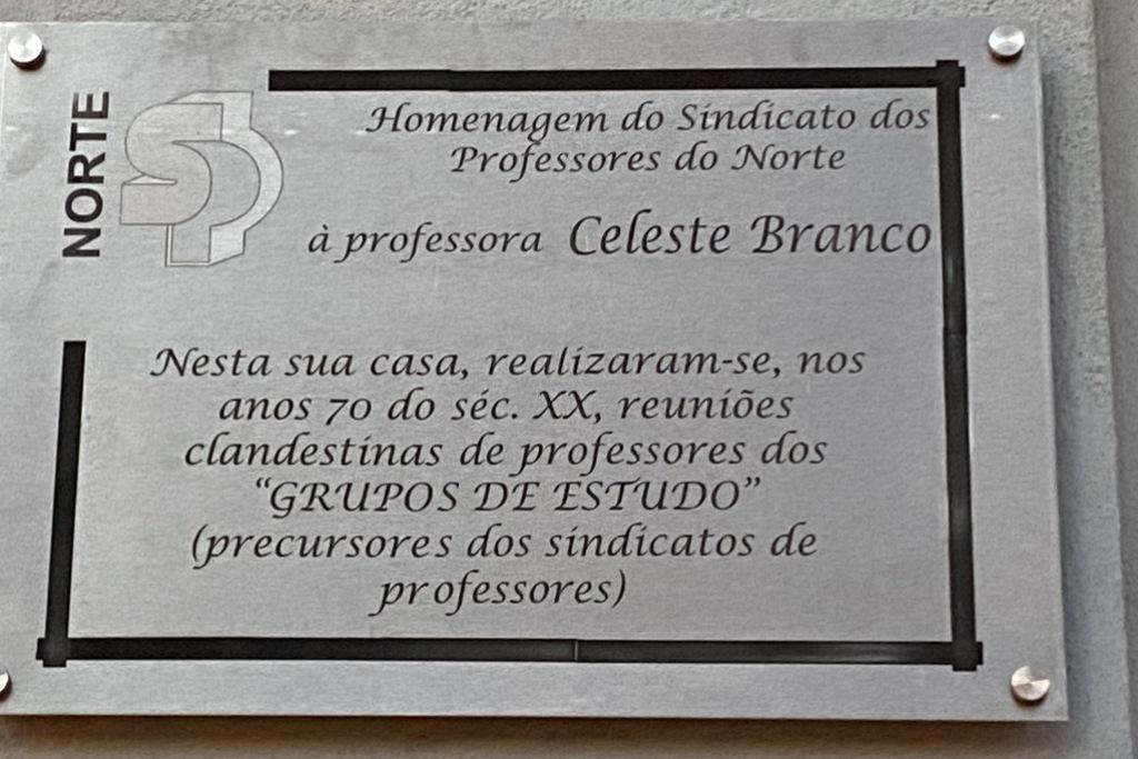 1001/Celeste_Branco_3.jpg