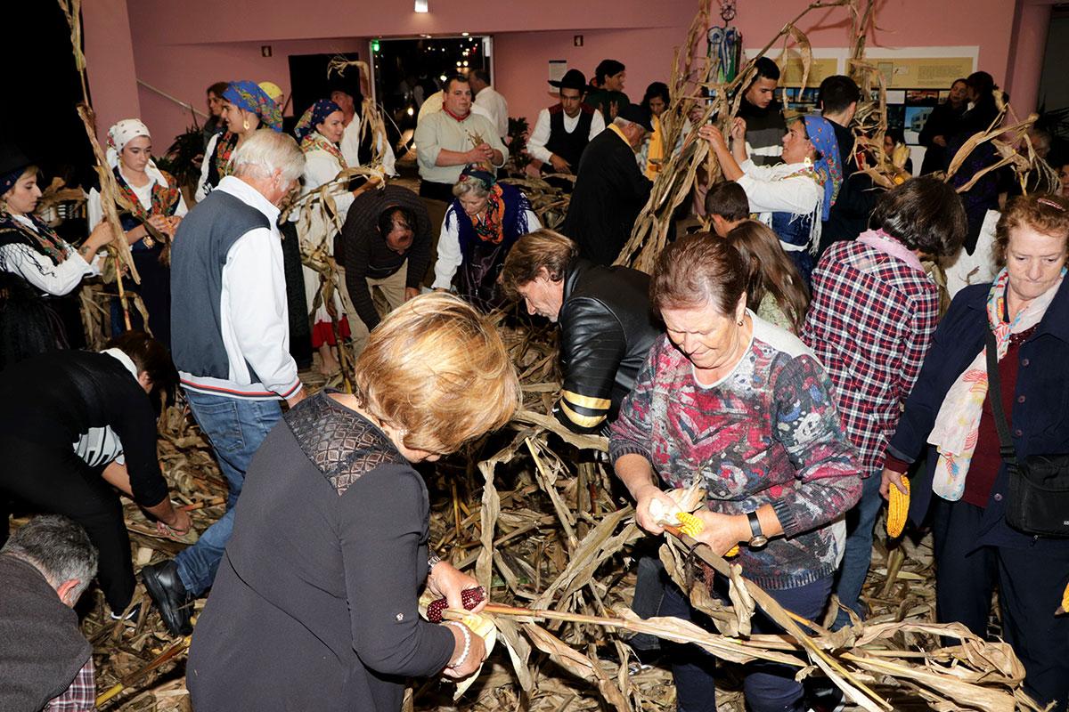 Desfolhada Tradicional na Eira do Diana-Bar