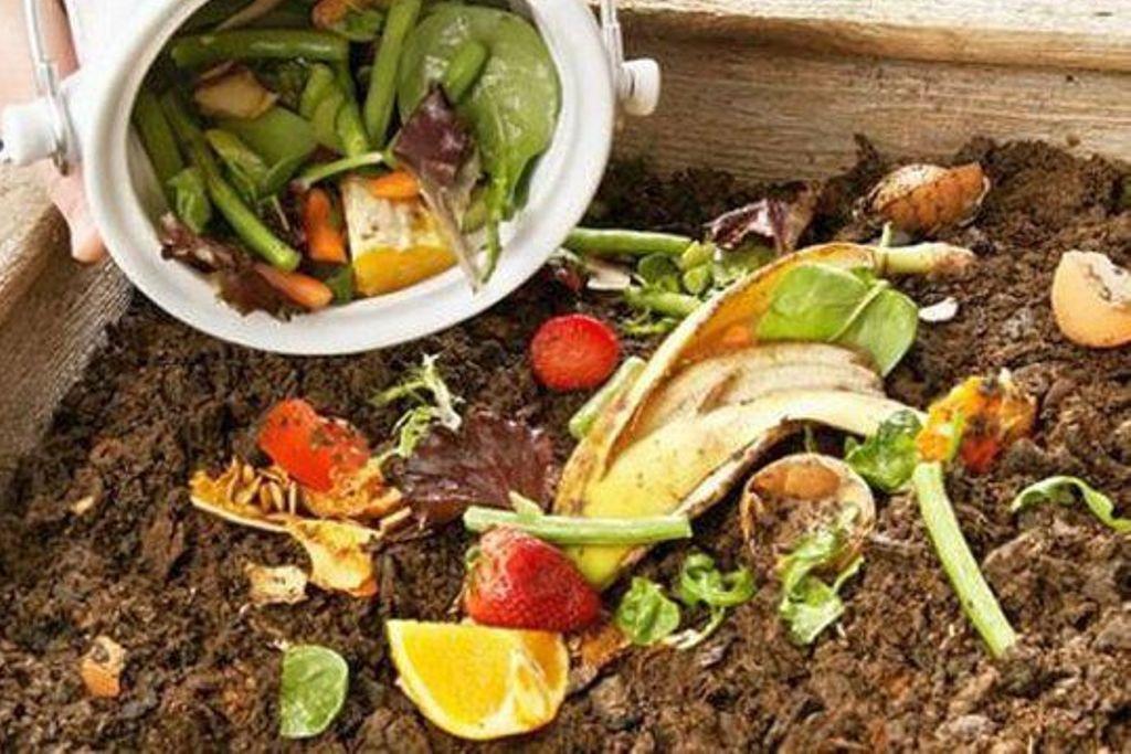 Habitações da Póvoa e Aver-o-Mar com Recolha de Resíduos Alimentares