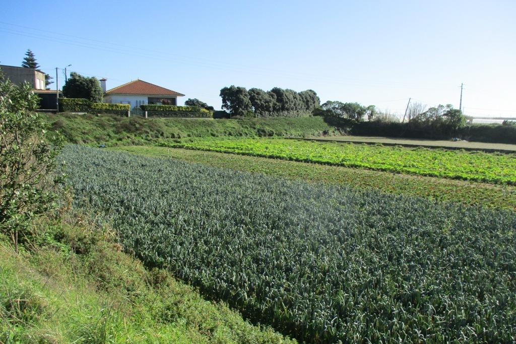 Recenseamento Agrícola em Todo Território Nacional