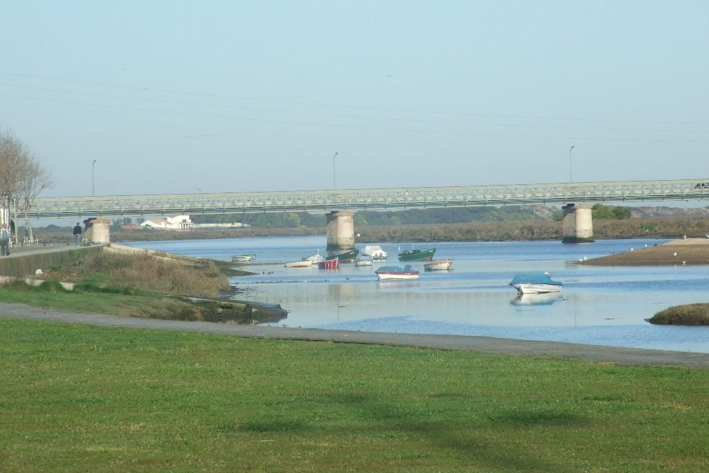Infraestruturas de Portugal Anuncia Intervenção na Ponte D. Luís Filipe