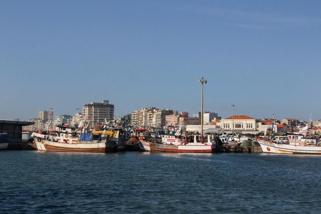 Ministro do Mar pede Apoios a Bruxelas para o Sector da Pesca e Aquicultura