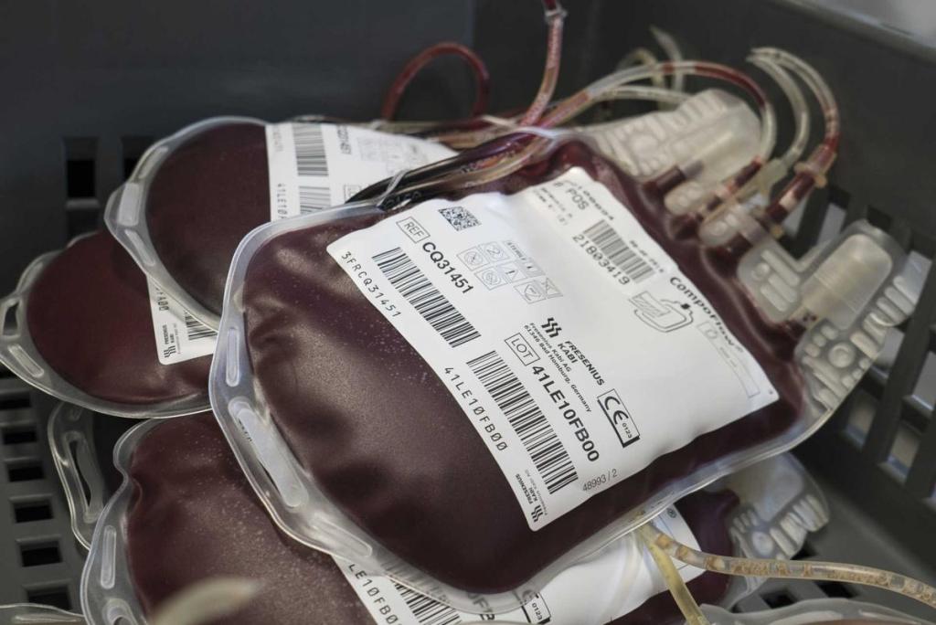 Dar Sangue é Dar Vida