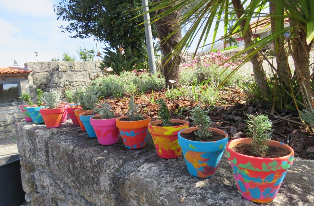 Dia Mundial do Ambiente com Construção de Mini Hortas Ecológicas