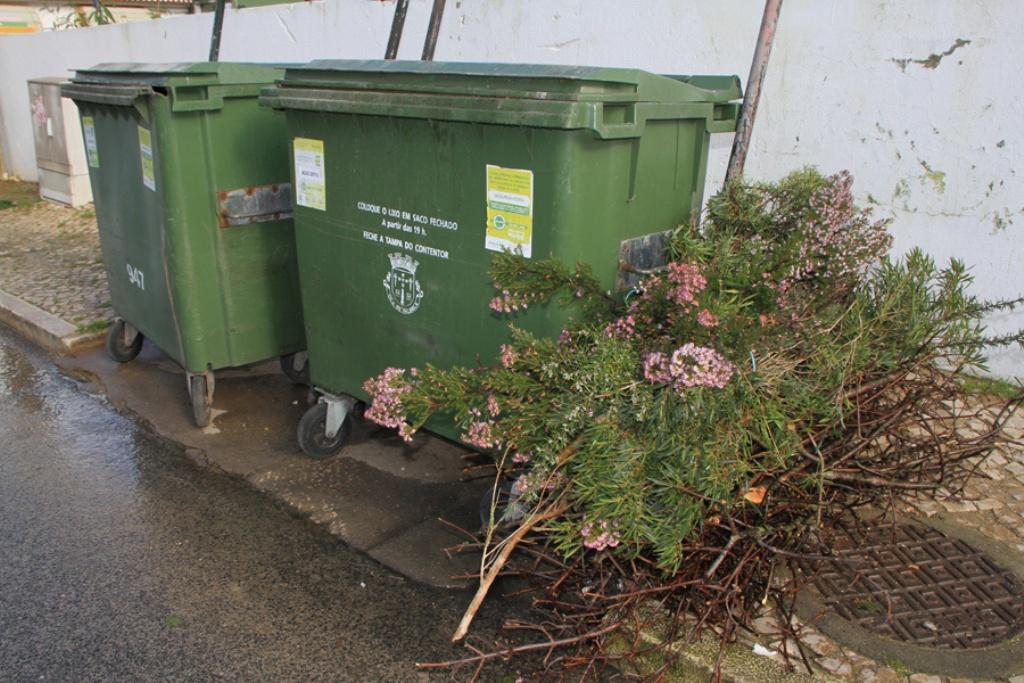 373/contentores-lixo.jpg