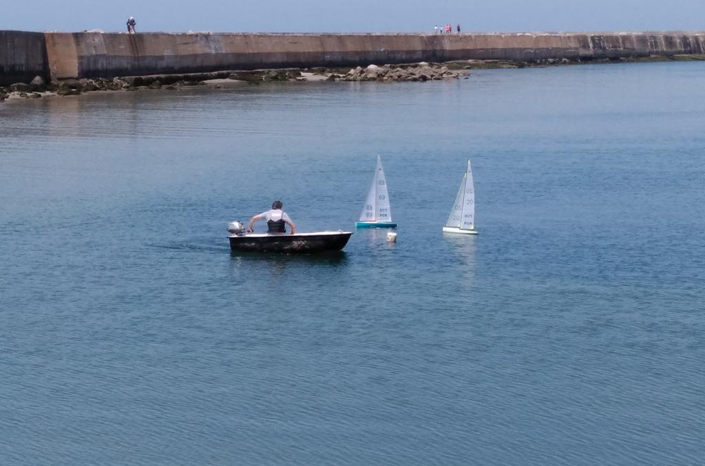 Clube Naval Povoense em Grande na Pesca Desportiva do Alto Mar