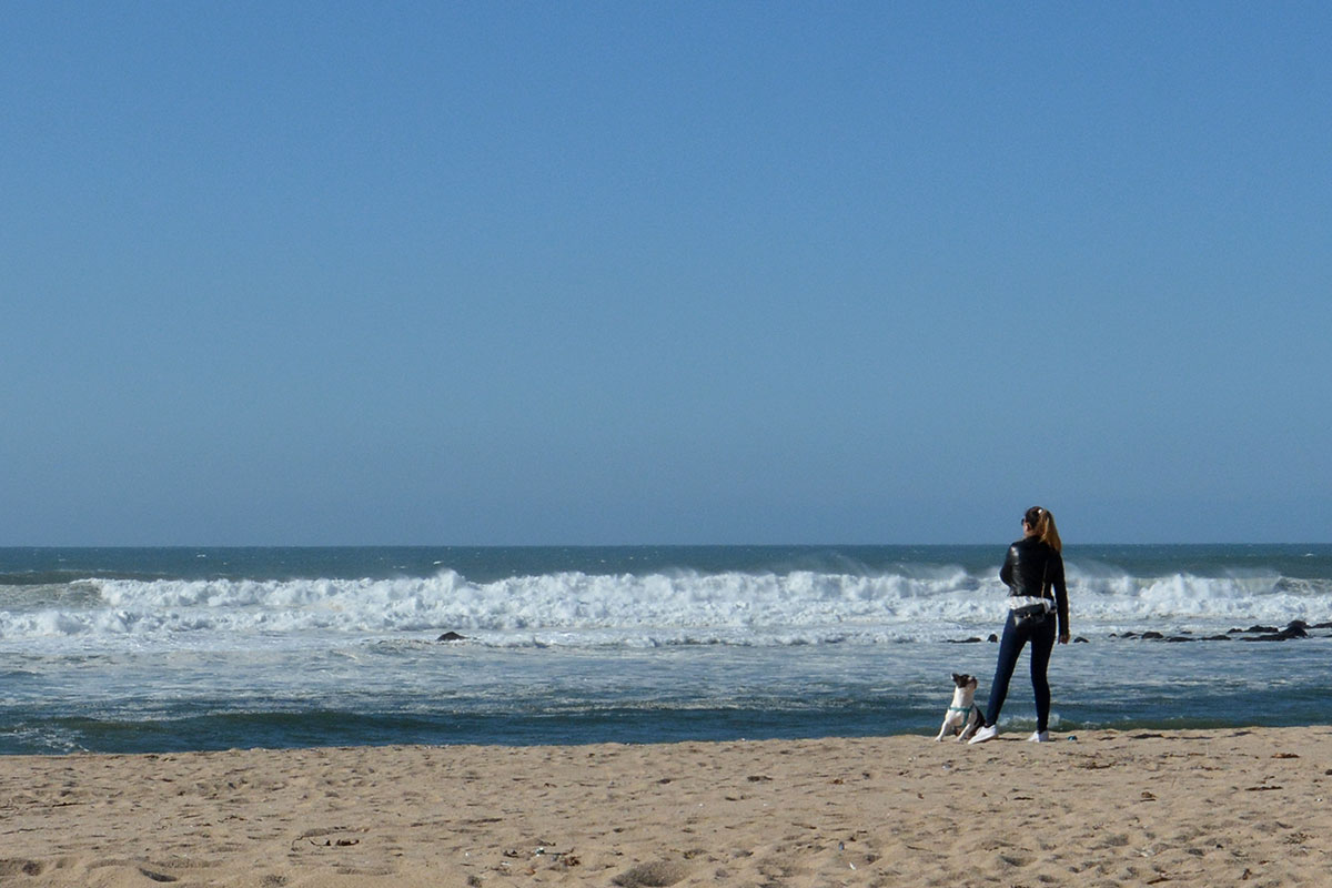Vento e Mar a Combinar Bravezas