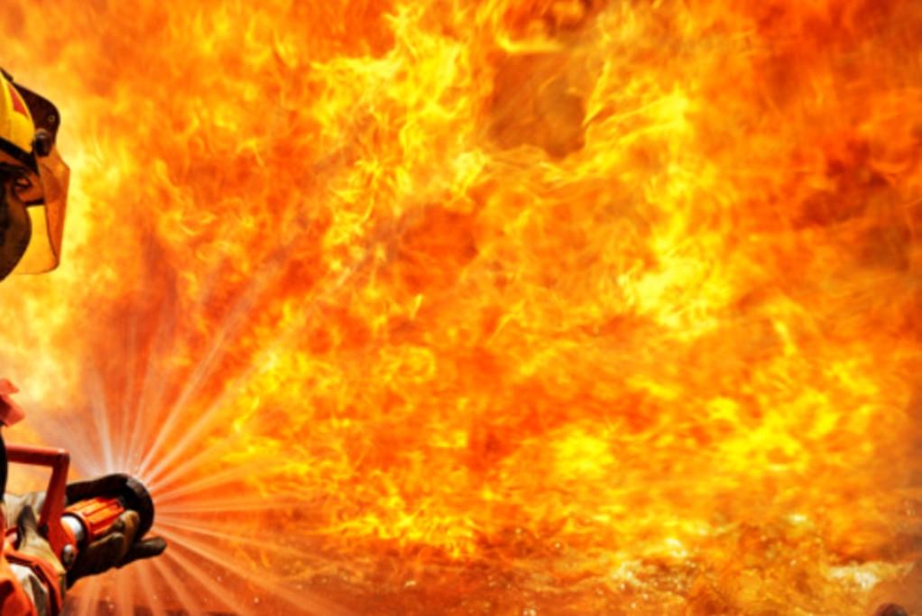 Bombeiros Combateram Incêndio numa Zona Florestal da Estela