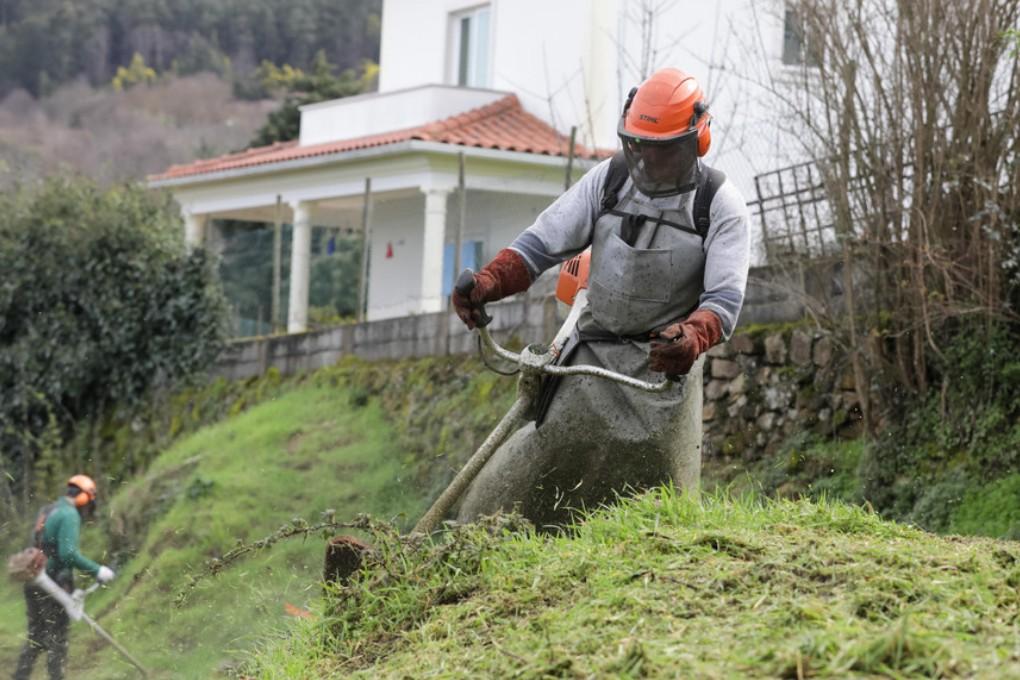 Limpeza de Terrenos com Prazo Prorrogado até 15 de Maio