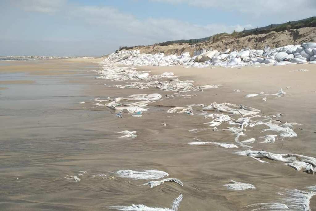 Limpeza da Praia da Estela nas Mãos dos Responsáveis do Estela Golf