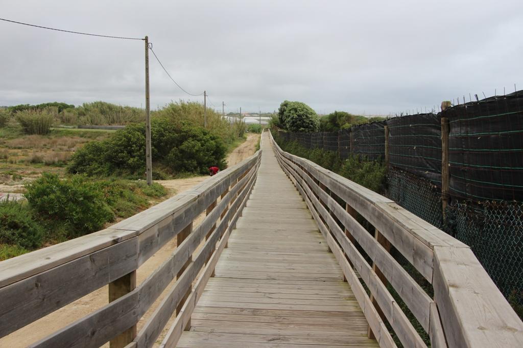 Passadiço Norte Completa Linha da Costa Poveira