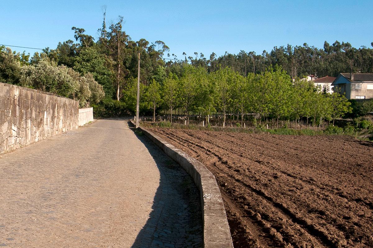 Balasar uma Paisagem Agrícola no Caminho da Modernidade
