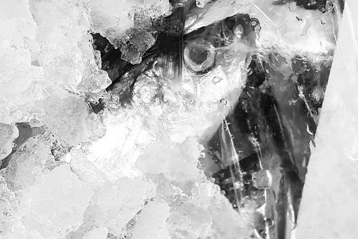 Proibida a Pesca da Sardinha