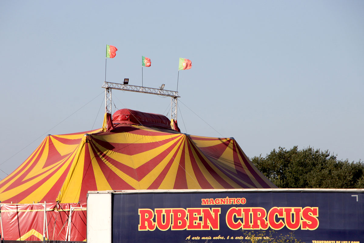 A vida é um circo